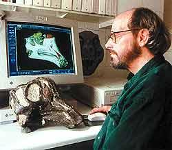 Все чаще открытия совершаются, когда ученые имеют дело не с костями животных, а с их компьютерными копиями. Так, американский палеонтолог Джек Хорнер видит на своем мониторе то, что недоступно простому практику, измеряющему череп рулеткой, а именно: головной мозг, органы зрения и обоняния гадрозавра.
