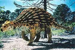 Голова и спина анкилозавра (вес — 7 тонн) защищены костяными пластинами. Хвост оканчивается (опять же) костяным набалдашником. Таким оружием этот ящер мог обратить в бегство даже врагов, превосходивших его размерами.