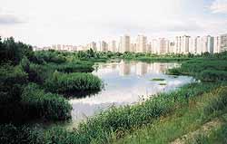 Озеро Вырлица и киевские новостройки