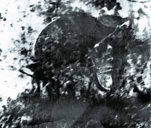 Изображение солдата, запечатленное на берегу реки Хопер. Снимок сделан полвека спустя!